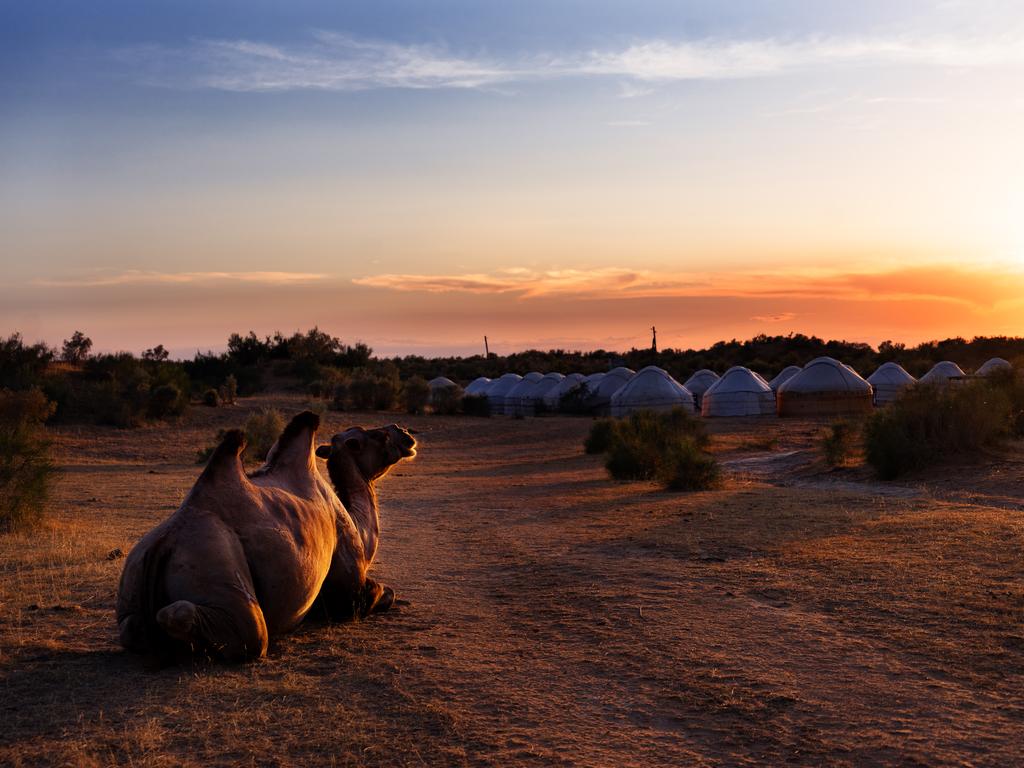 Asraf – Nurata: Wanderung bei Asraf, Fahrt nach Nurata, Übernachtung in Jurten