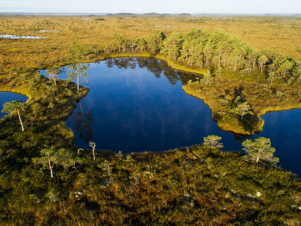 Kuressaare – Pärnu – Soomaa-Nationalpark: Fährfahrt aufs Festland, Spaziergang in Pärnu, Wanderung im Soomaa-Nationalpark