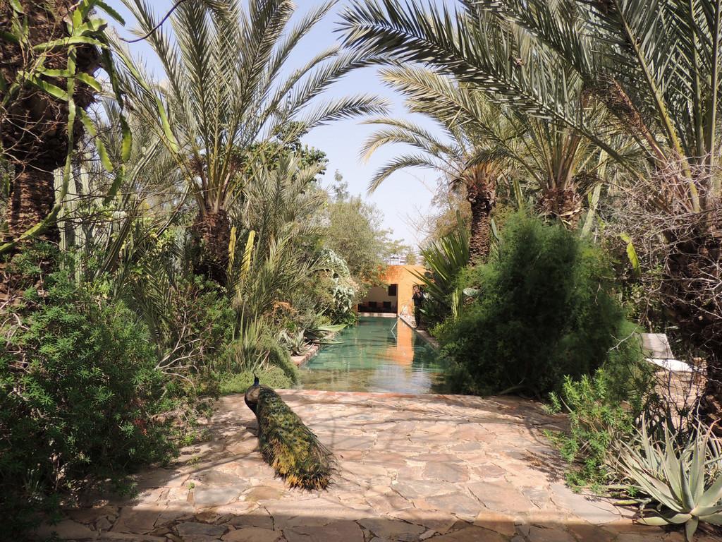 Kasbah-Hotel Dar Al Hossoun **** in Taroudant