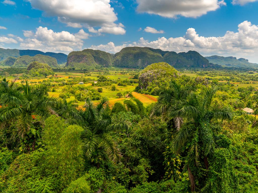 Havanna – Las Terrazas – Viñales: Wanderung im Naturschutzgebiet Las Terrazas, Baden im Río San Juan, Fahrradtour nach Soroa