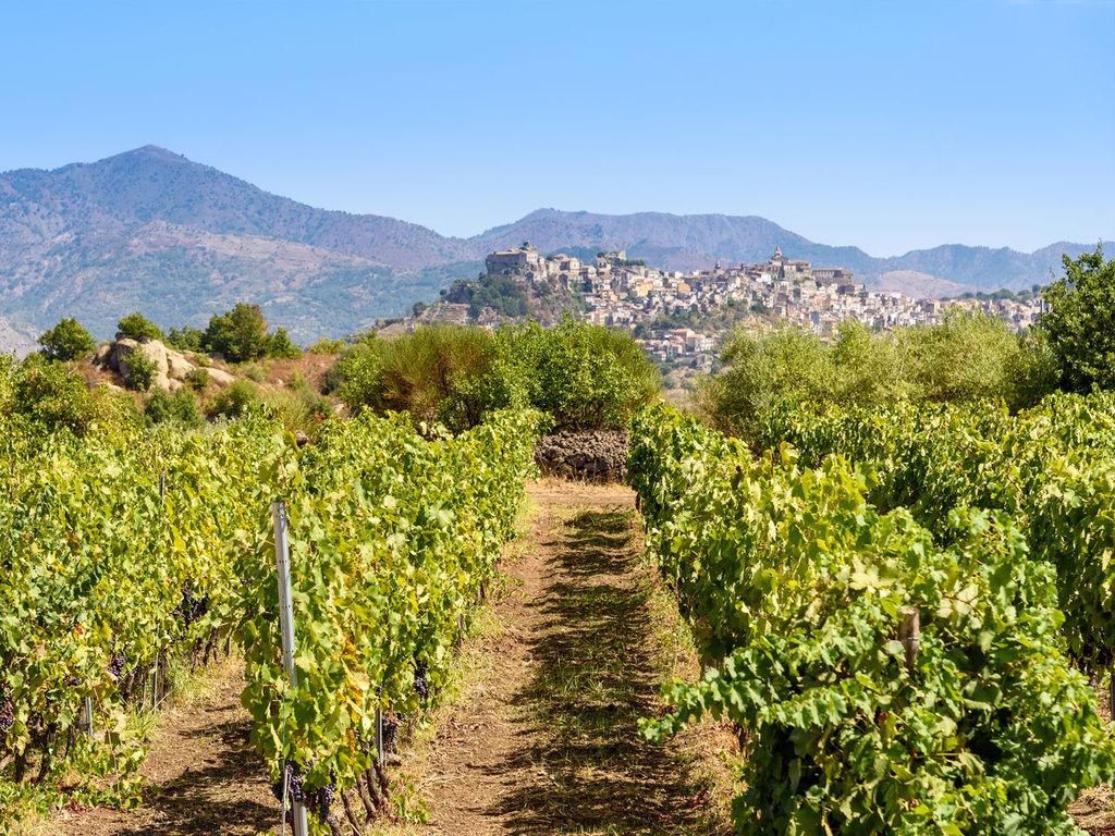 Letojanni – Alcantara Tal – Cefalù: Besuch der Alcantara Schlucht und des Dorfes Castiglione, Treffen mit Cesare und Federica mit Weinverkostung, Abstecher nach Randazzo, Weiterfahrt nach Cefalù