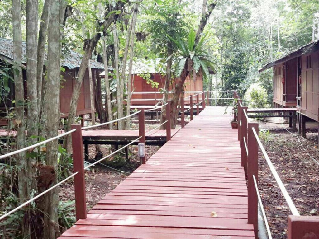 Nature Lodge **(*) in Kinabatangan