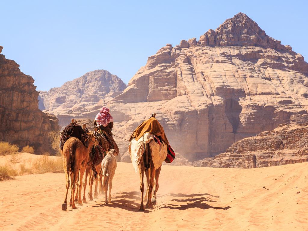 Wadi Rum – Aqaba: Kamel-Safari im Wadi Rum, freier Nachmittag mit Bademöglichkeit am Strand