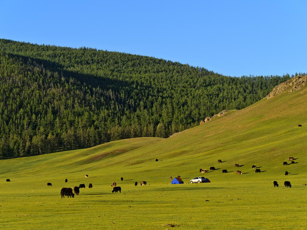 Orkhon-Tal  : Trekking Tag 2: im Orkhon-Tal