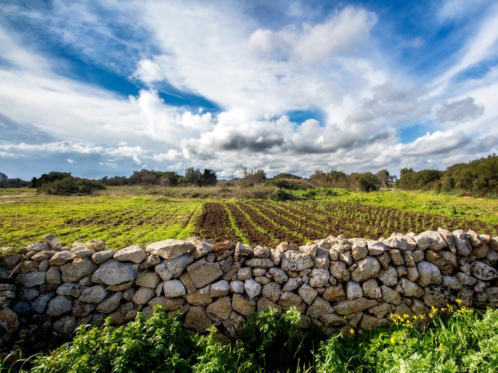 Ausflug in den Park Terra delle Gravine: Wanderung entlang einer Felsenkirchen mit anschließender Verkostung regionaler Produkte