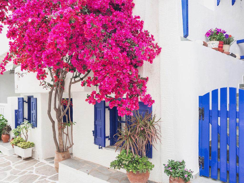 Paros - Mykonos: Fährüberfahrt nach Mykonos, Freizeit
