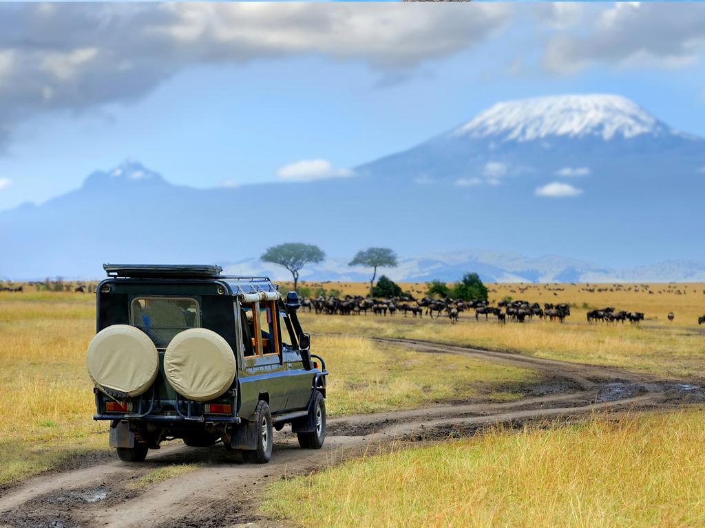 Amboseli N.P.: Pirschfahrten am Vormittag und Nachmittag