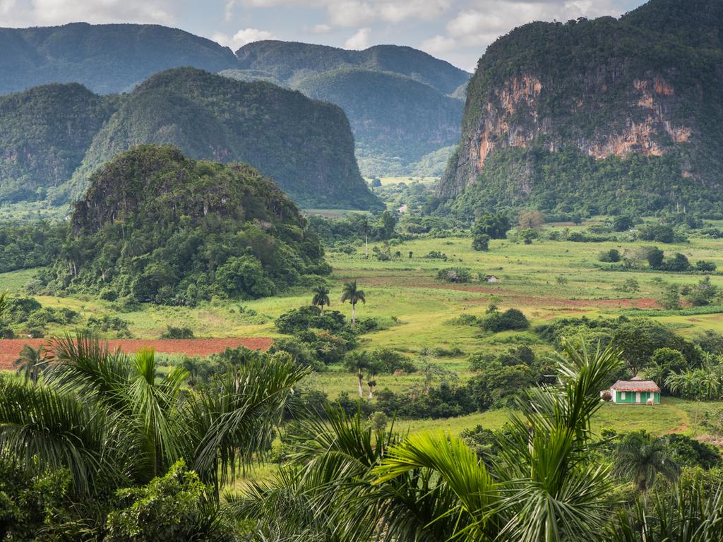 Havanna – Pinar del Rio – Viñales: Fahrt nach Pinar del Rio, Stadtbummel, weiter nach Viñales, Wanderung zu Trockenschuppen der Tabakbauern entlang der Mogotes, Freizeit