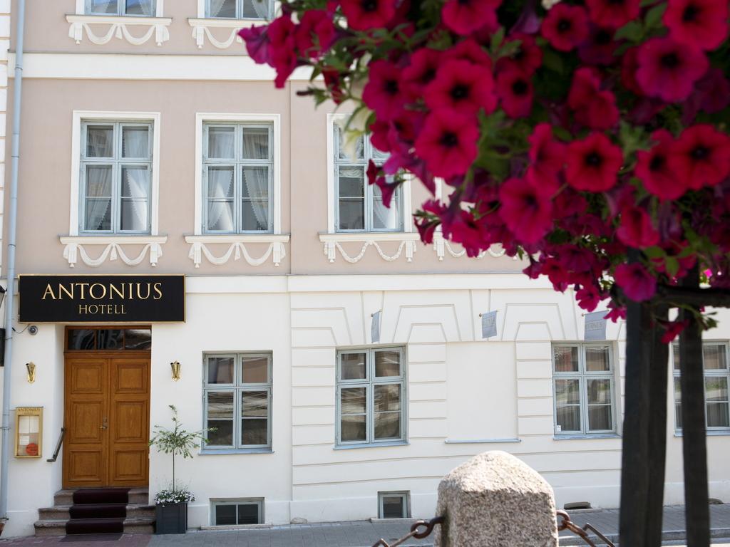 Antonius **** in Tartu
