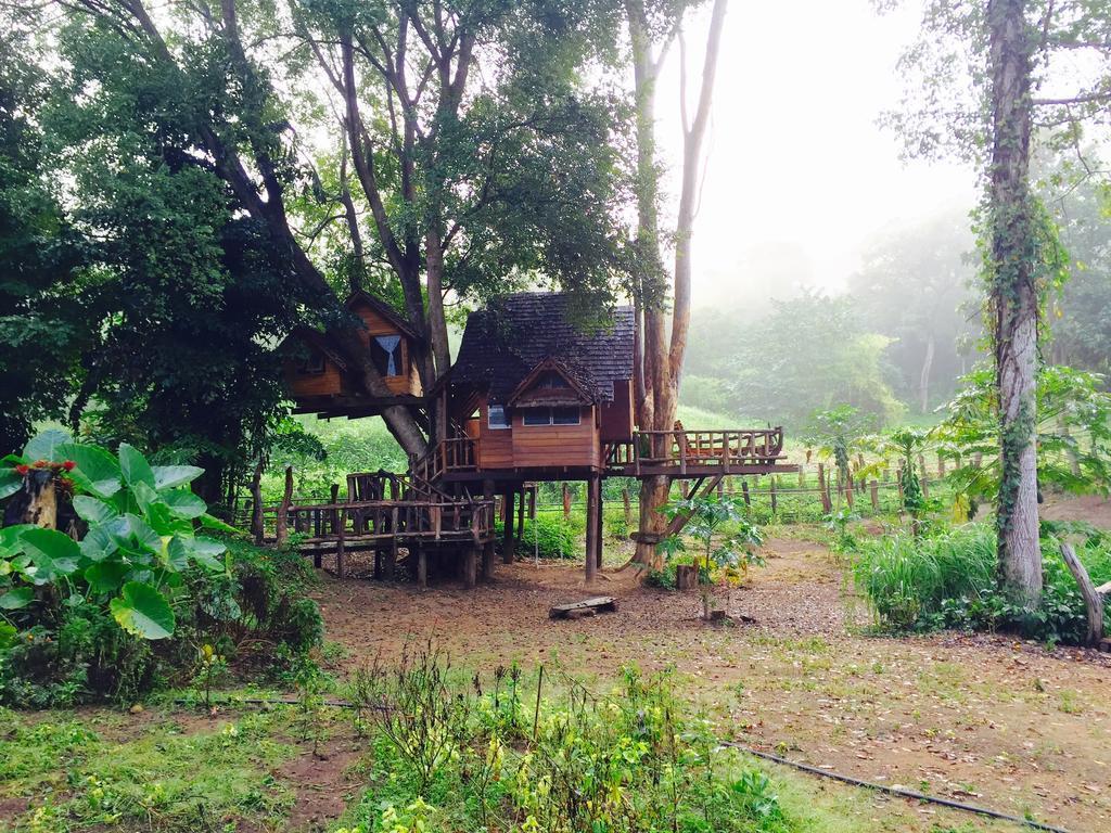 Pasak Tree House*** in Rabeang Pasak