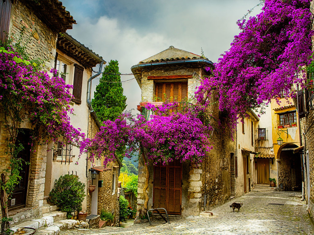 Avignon - Gordes - Roussillon - Manosque: Fontaine de Vaucluse, Besichtigung Klosterkirche Sénanque, Bummel durch Gordes,  Wanderung bei den Ockerfelsen von Roussillon