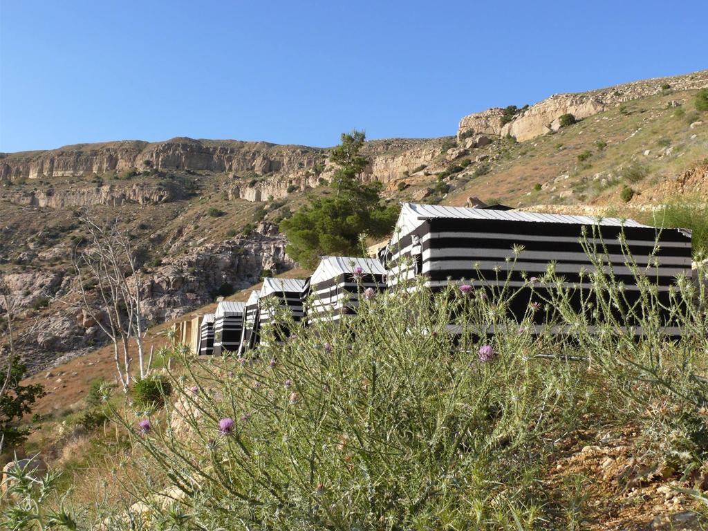 Wadi Dana Eco Camp  in Dana