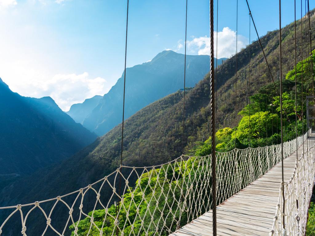 Oaxaca – Llano Grande: Wanderung in der Sierra Norte