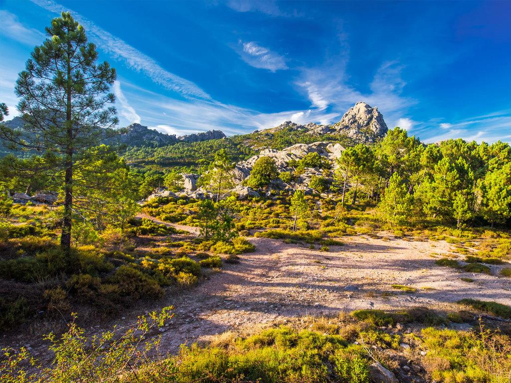 Corte – Restonica-Tal – Melo-See – Corte: Wanderung im Restonica-Tal zum Melo-See und ggf. weiter zum Capitello-See, Rückfahrt nach Corte am späten Nachmittag