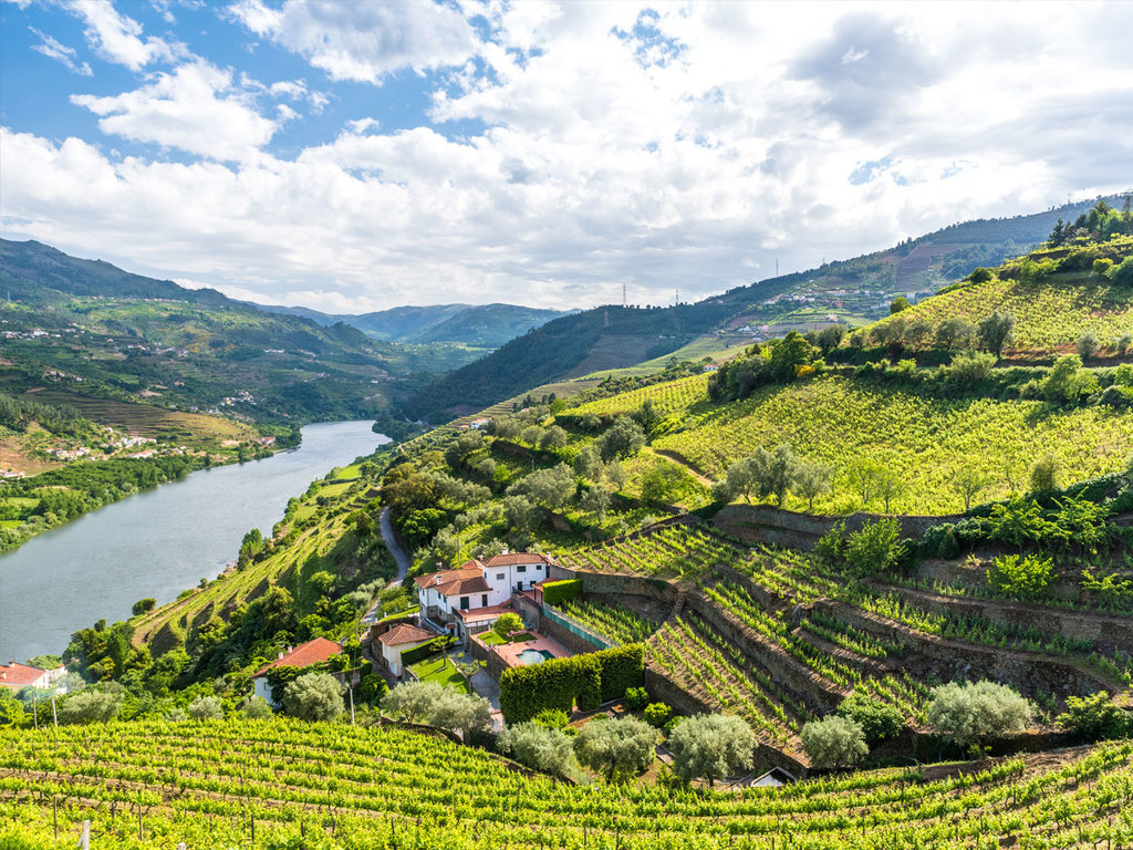 Chaves – Douro-Tal: Fahrt ins Douro-Tal, Führung durch den Palast Mateus in Vila Real und Bootstour auf dem Douro ab Pinhão