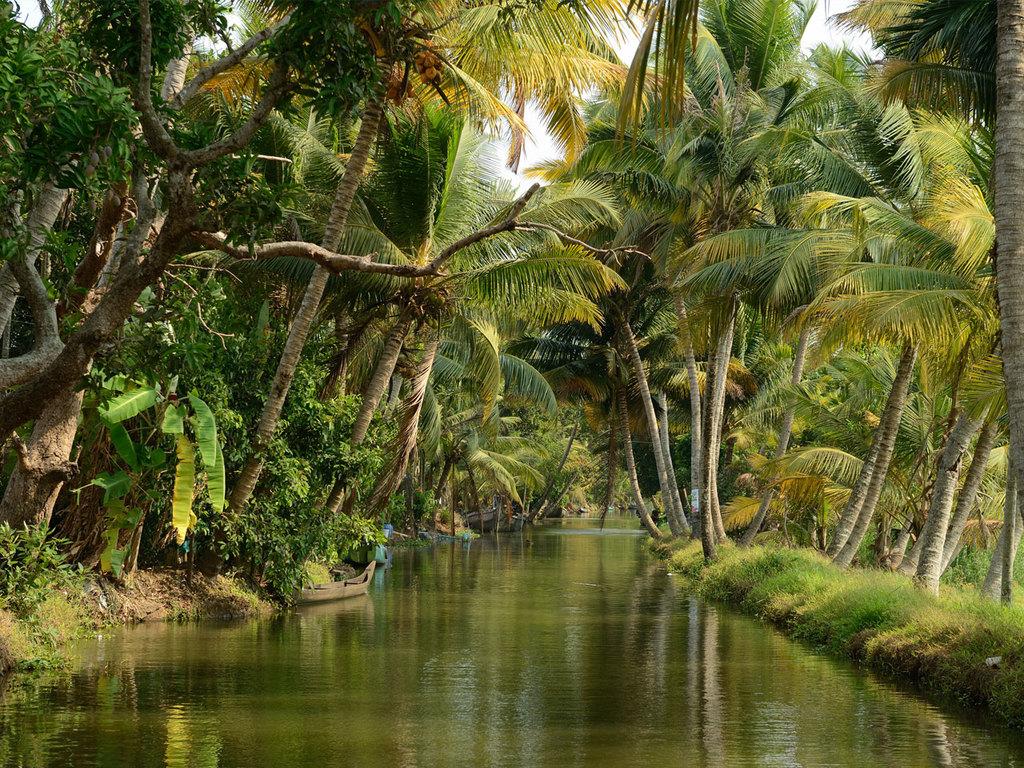 "Thekkady – Alleppey: mit dem Hausboot durch Keralas ""Backwaters"""
