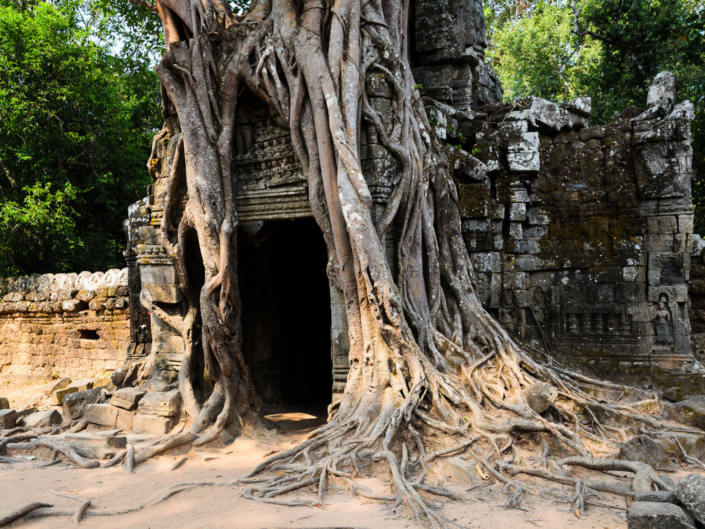 Siem Reap/Angkor: Bayon, Elefantenterrasse, Preah Khan, Neak Pean, Mebon, Pre Rup, Sras Srang, Ta Prohm