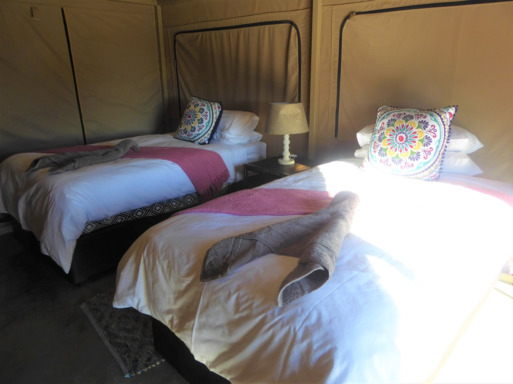 Elephant Sands Adventure Tented Lodge  *** bei Nata