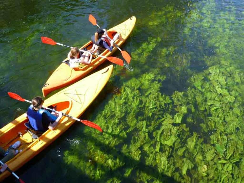 Unsere Kayaks für die zweitägige Tour auf dem Fluss Krutynia