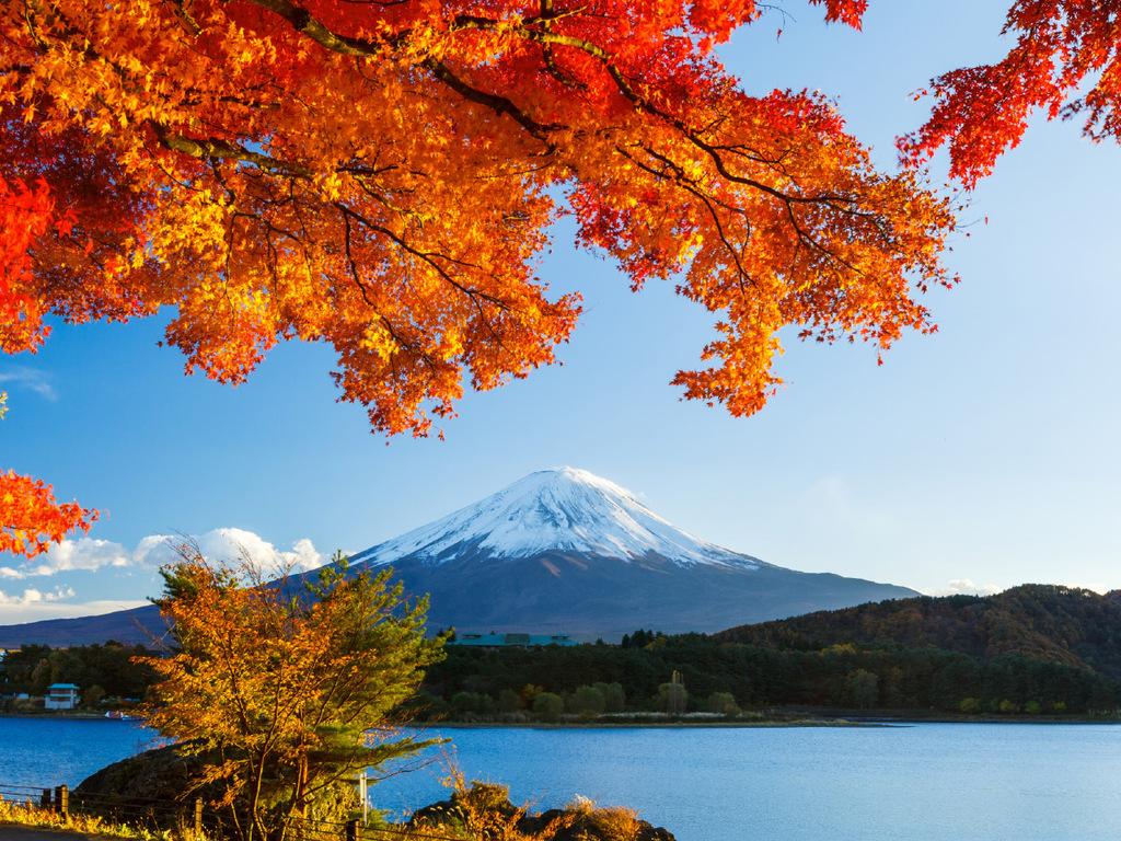 Matsumoto und Kawaguchiko: Matsumotojo, Fuji-Hakone-Nationalpark