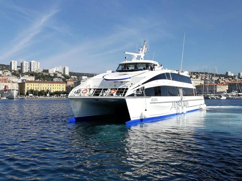Beispiel für einen Catamaran