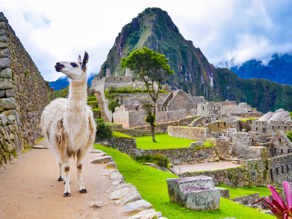 Urubamba – Machu Picchu – Cuzco : Andenbahn nach Aguas Calientes, Besuch von Machu Picchu, Rückfahrt nach Cuzco mit Bus und Zug