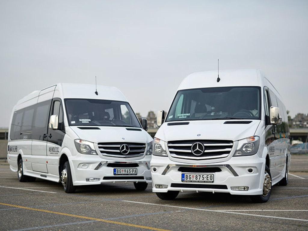 Beispiel für unsere Minibusse (Gruppen ab 7 Personen)