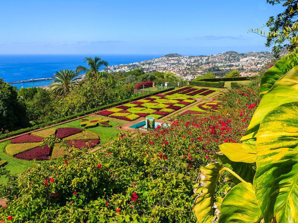 Funchal: ganztägige Stadtführung mit Seilbahnfahrt nach Monte und Besichtigung der Wallfahrtskirche, Besuch des Botanischen Gartens, Spaziergang durch die Altstadt,  Besuch einer Weinkellerei mit Weinverkostung des berühmten Madeiraweins