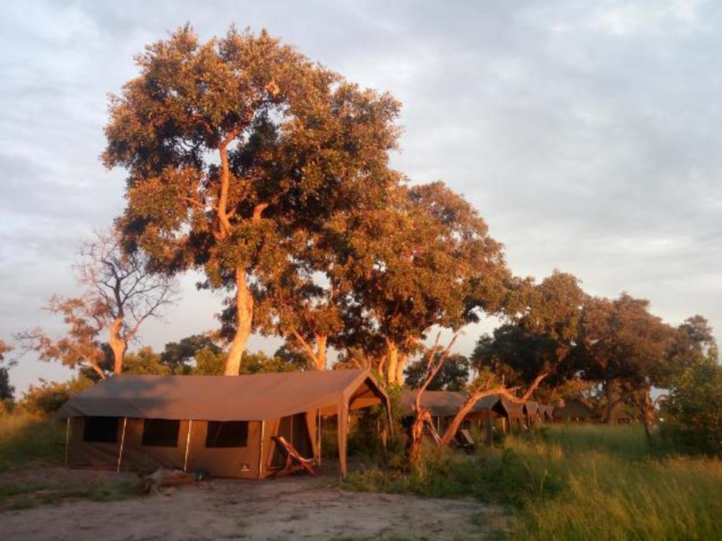 Mopororo Adventure Tented Lodge *** in der Gomoti Region