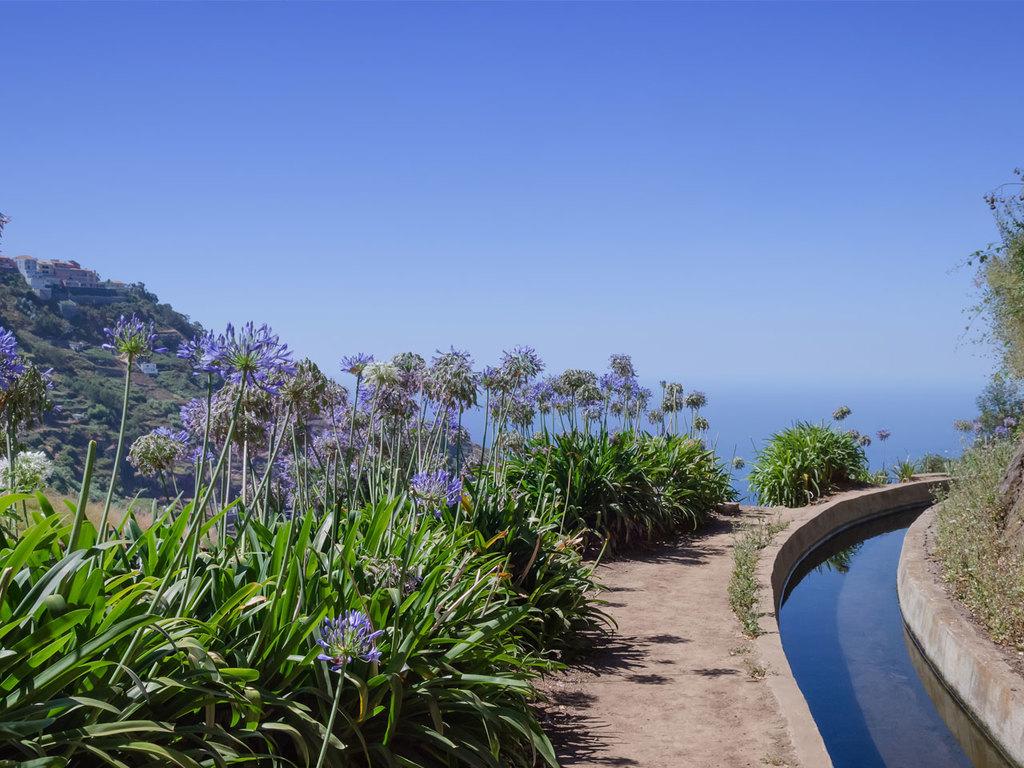 Machico – Porta da Cruz – Santo António da Serra: ganztägige Wanderung entlang der Küste über Boca do Risco