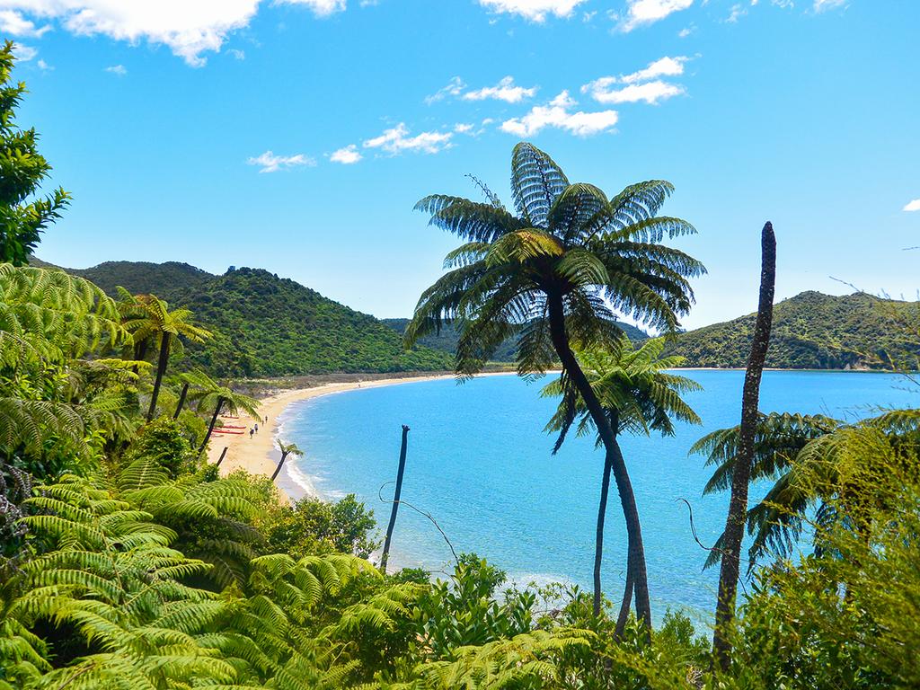 Nelson – Abel Tasman-Nationalpark – Nelson : Wanderung durch Wälder und über Strände