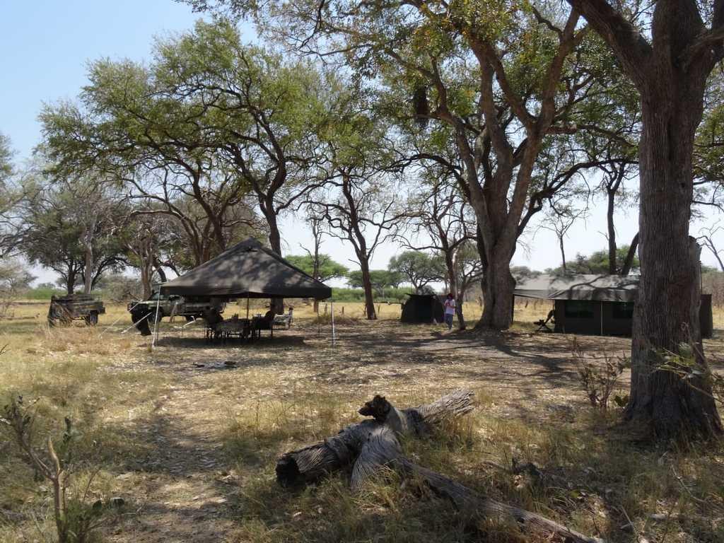 Mobiles Tented Camp  in in der Khwai- und Savuti Region