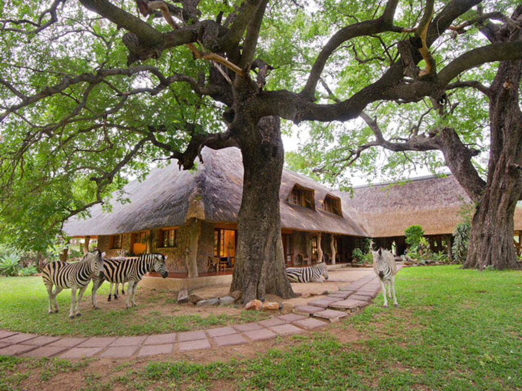 Blyde River Canyon Lodge **** in in der Mpumalanga Region