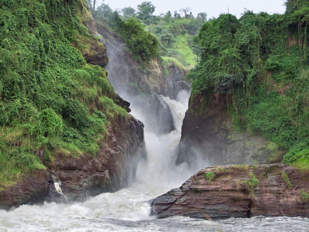 Murchison Falls N.P.  : Pirschfahrt am Morgen und Bootsfahrt auf dem Nil, Wanderung zur Abbruchkante der Wasserfälle