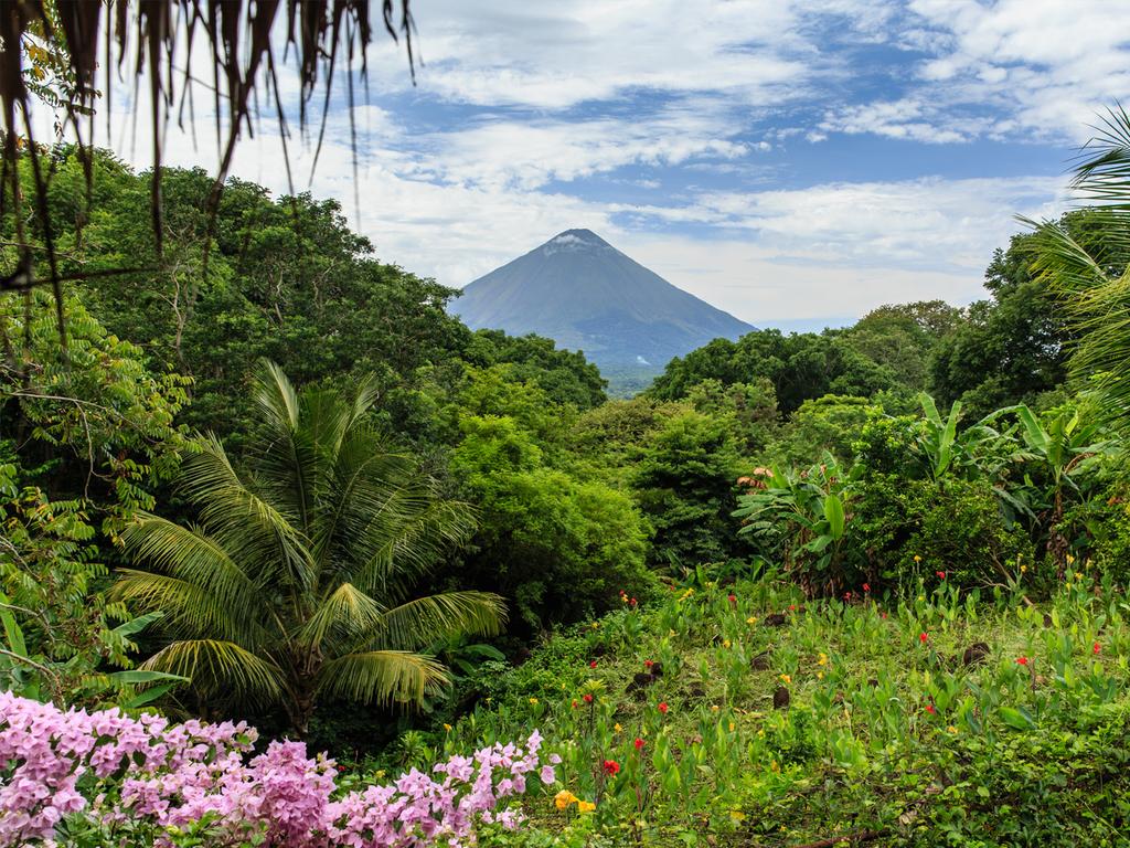 La Fortuna: Wanderung über die Lavafelder des Arenal-Vulkans, Besuch des Hängebrückenparks inkl. Wanderung