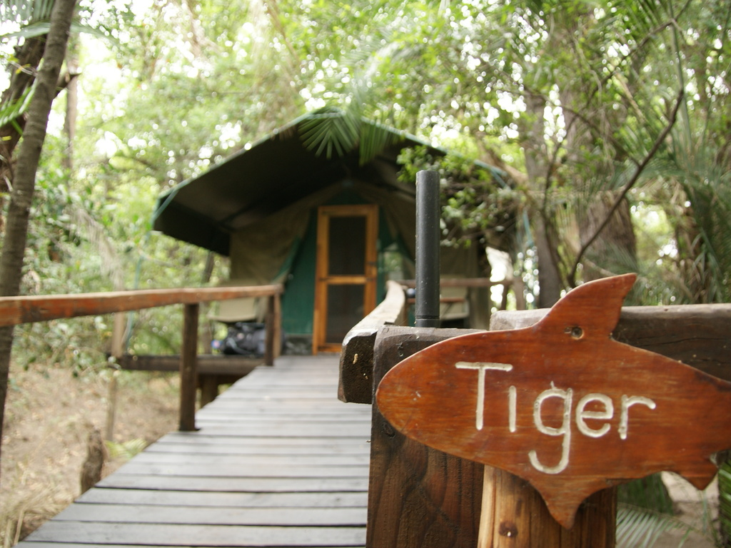 Nguma Island Lodge *** am Okavango-Fluss/West-Delta