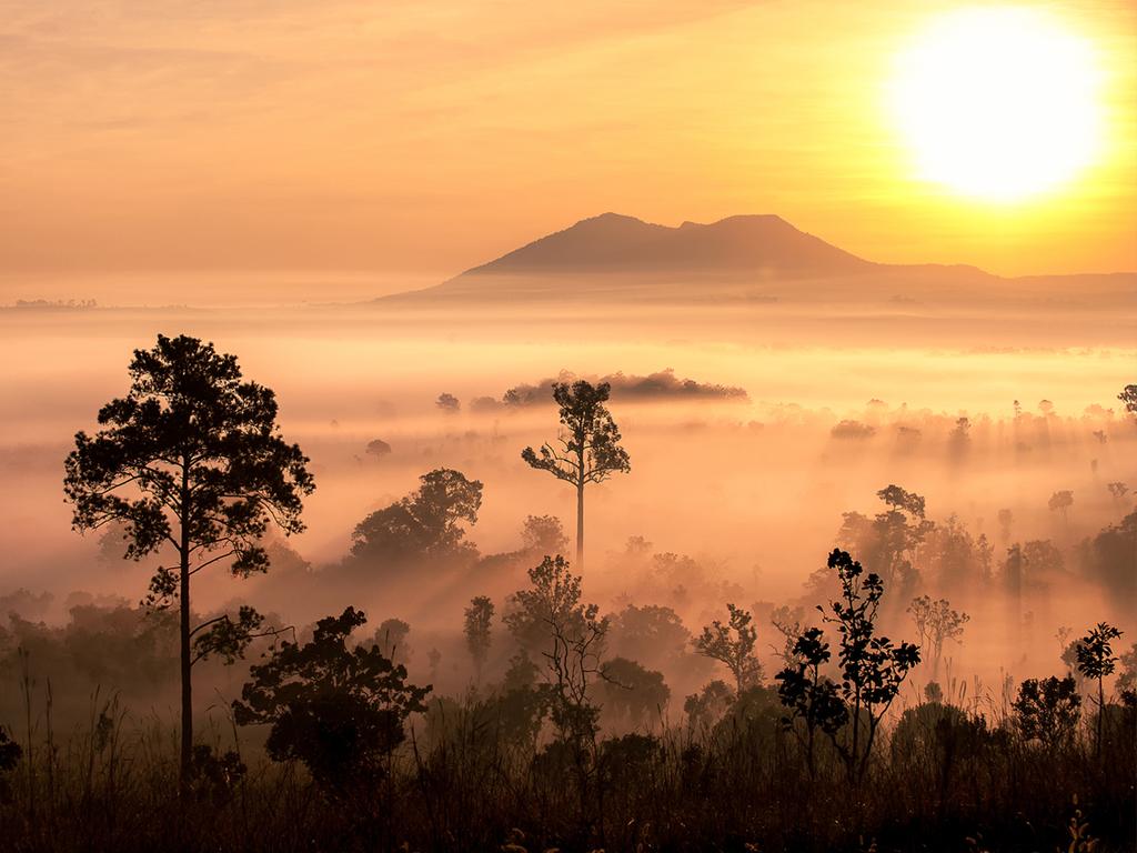 Samburu-Nationalreservat – Nanyuki: Pirschfahrt am frühen Morgen, kleiner Stadtrundgang in Nanyuki