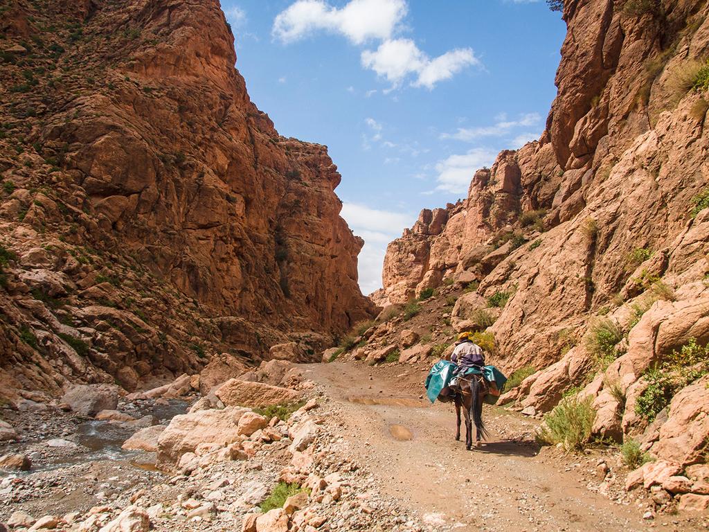 Azib N'Ikiss – Tarkedit: Trekking Tag 2: über die Pässe Tizi m'Oumskik und Tizi N'Oughroy