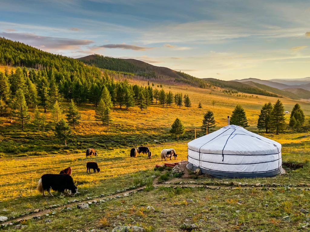 Karakorum – Orkhon-Tal : Kloster Tuvkhun, Trekking Tag 1, Übernachtung im Zelt