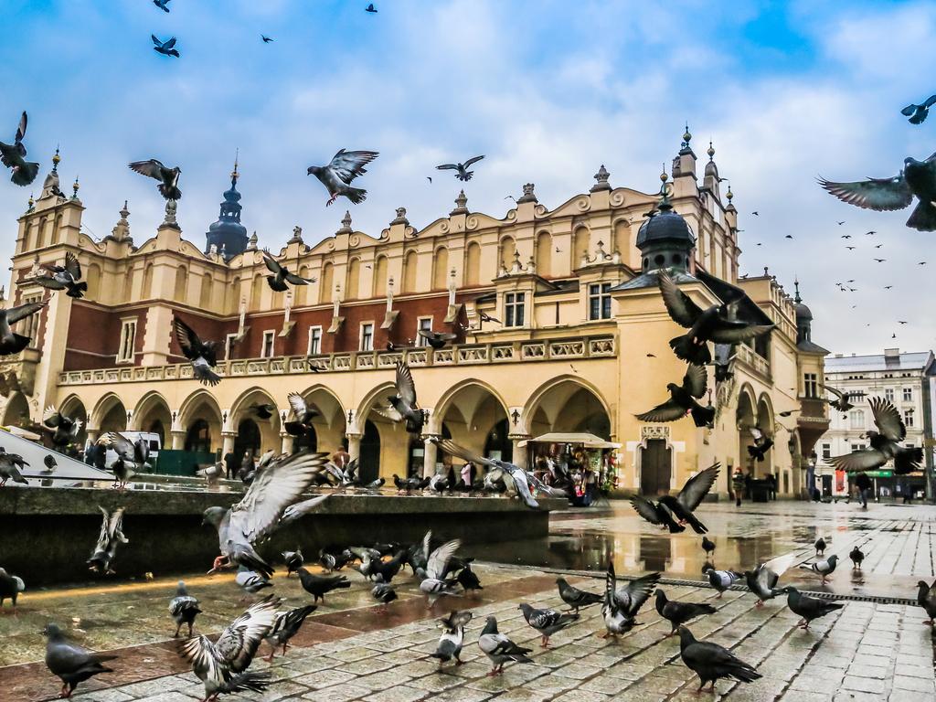 Krakau: Citytour mit dem Fahrrad und zu Fuß durch die Altstadt und zum Wawel-Plateau, nachmittags frei oder optionaler Besuch des Salzbergwerks Wieliczka
