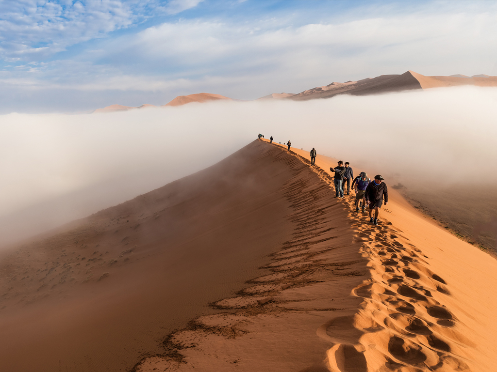 Sossusvlei und Sesriem Canyon : frühe Fahrt bis zum Ausgangspunkt im Nationalpark, Wanderung in den Dünen und der schönen Umgebung von Sossusvlei, am Nachmittag Wanderung durch den Sesriem Canyon
