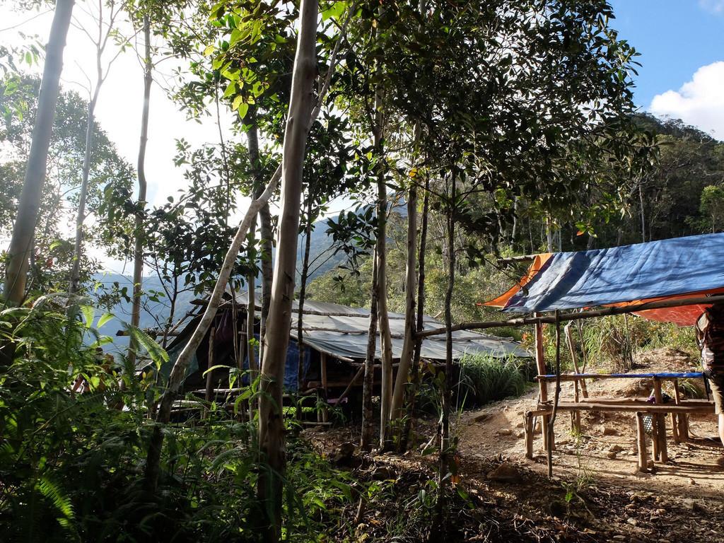 Camp 2 im Crocker Range Park