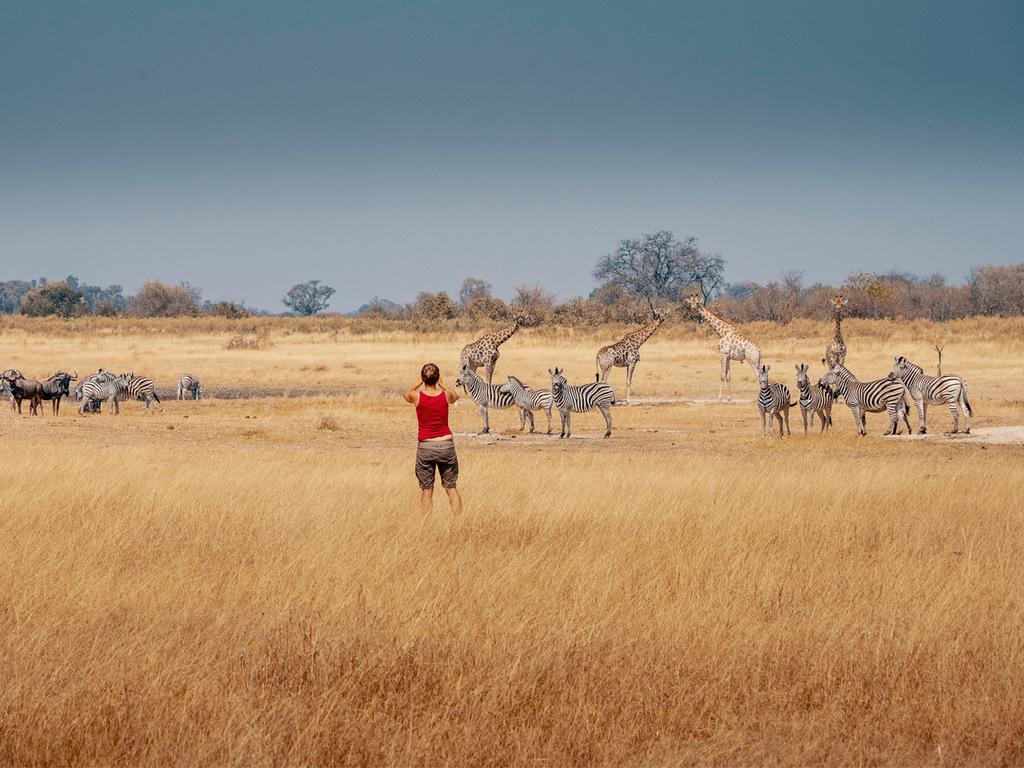 Mudumu N.P.: vormittags Pirschfahrt in offenen Safari-Fahrzeugen, Bootsfahrt mit Tierbeobachtungen am Nachmittag