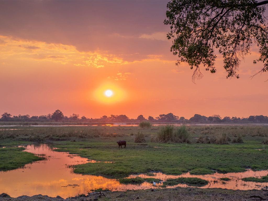 Sambesi Region – Okavango-Delta (West-Delta): am späten Nachmittag Bootsfahrt mit Sundowner