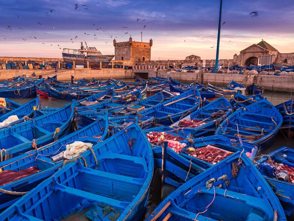 Essaouira : frei für eigene Entdeckungen
