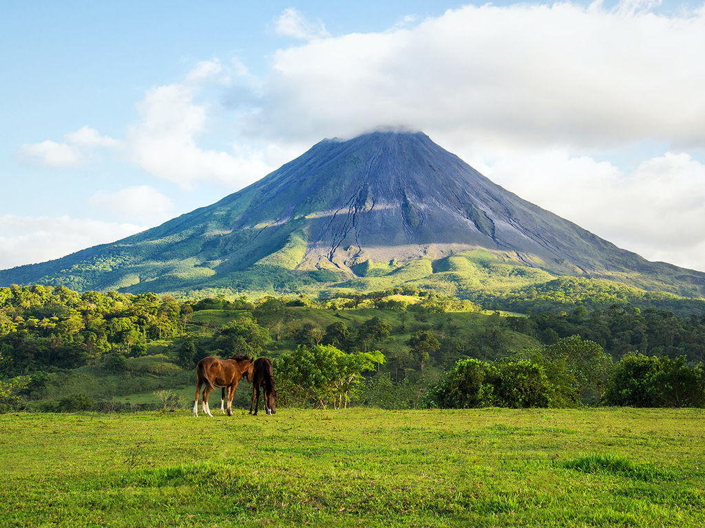 La Fortuna: Besuch des Hängebrückenparks, Wanderung am Arenal-Vulkan