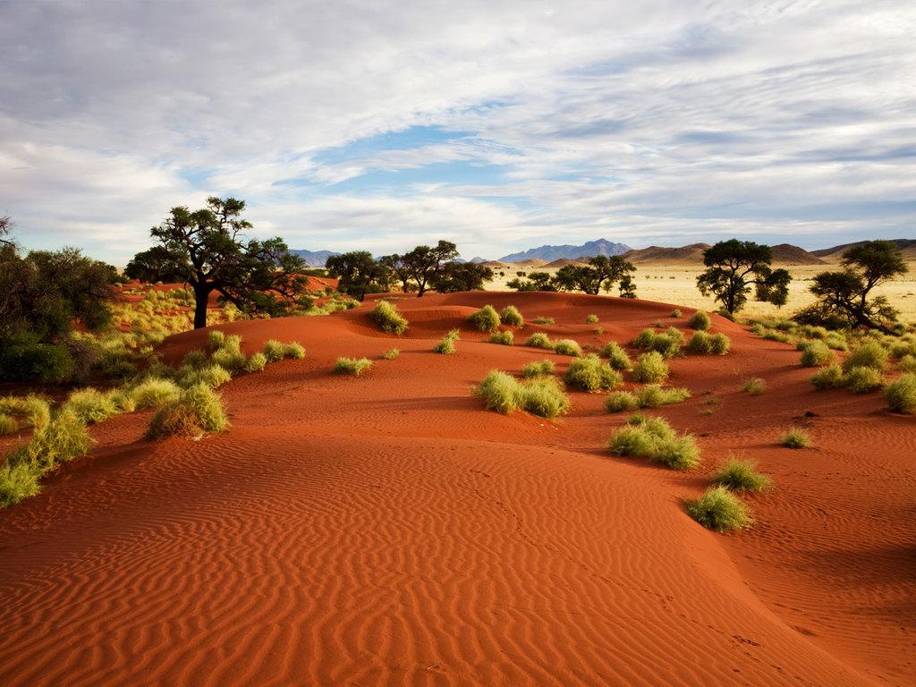 Windhoek – Kalahari: kleine Wanderung durch die Natur mit dem Volk der San