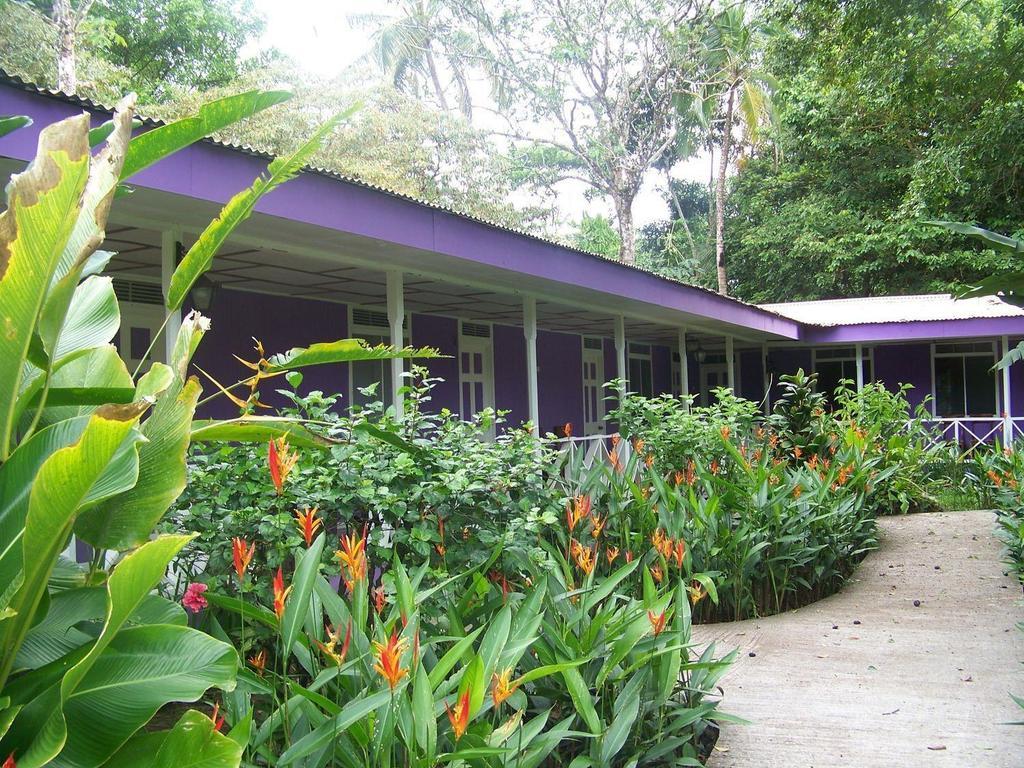 La Baula Lodge *** am Tortuguero-Nationalpark