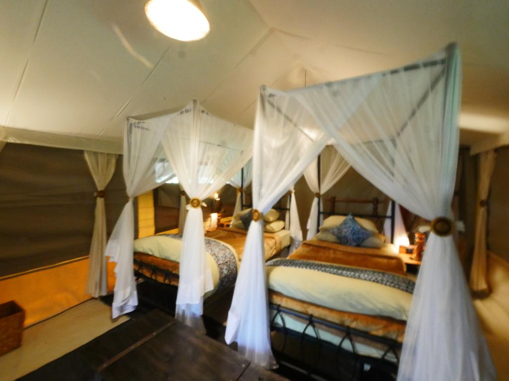 Tortilis Tented Camp **** in Ngorongoro-Wildschutzgebiet