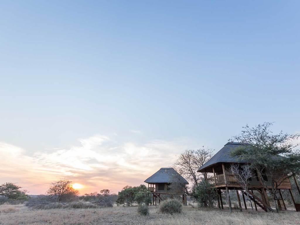 nThambo Tree Camp ***(*) in Wildreservat Klaserie